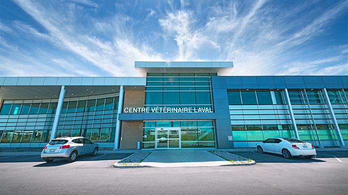 Vergo - Centre vétérinaire - Laval
