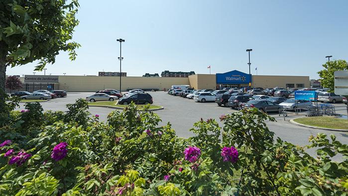 Vergo - Walmart - Kirkland