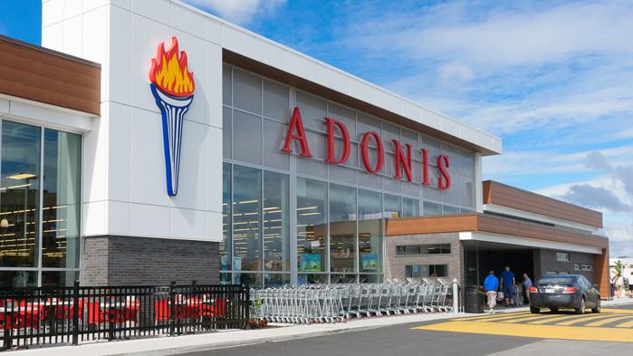 Vergo - Adonis - Anjou