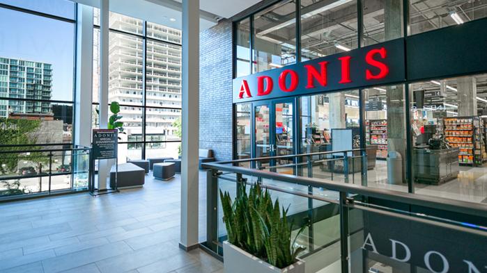Vergo - Adonis Griffintown - Montréal